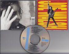 JOE WALSH Ordinary Average Guy 1991 CD EPIC AUSTRIA [ EAGLES JAMES GANG] MINT