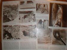 Archaeology Article Gibeon near Jerusalem 1956