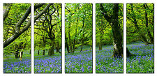 Spring Forest Flowers Trees Photo on Canvas Framed Ready to Hang Wall Art Decor