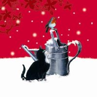 'Festive Garden' Black & White Cat Robin on watering can Small Xmas cards 10 pk