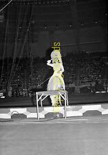 1969 Circus Negative - South Bend IN - Ingeborg Rhodin - Ringling Barnum Bailey