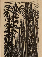 White Pine Tree Small Original Woodcut from Alpine Mountain Trees Landscape