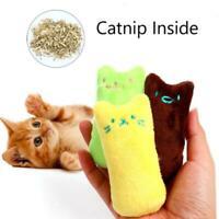 Zähne knirschen Katzenminze Spielzeug Lustige interaktive Katzenspielzeug V3J6
