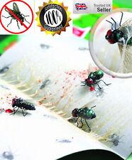 10x Mosca Trampa Bug Wasp Insectos Pegajoso-tarjeta sin veneno trampa atrapasueños
