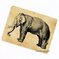 Elephant Deco Magnet, Decorative Fridge Refrigerator Antique Animal Illustration