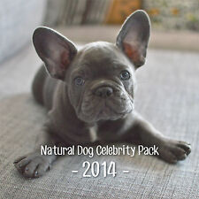 2014 Celebrity Dog Wall Calendar - 12 x 12 and spiral bound FRENCH BULLDOGS