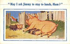 POSTCARD  COMIC   DONALD  McGILL   PIGS  Related  May I ask Jimmy...