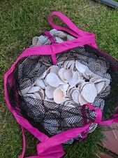 More details for assorted sea shells