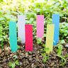 100 Pcs Plastic Plant Seed Labels Pot Marker Nursery Garden Stake Tags Novelty