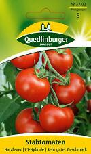 Stabtomaten Harzfeuer Solanum lycopersicum 483702 Quedlinburger AR3525