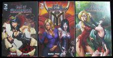 Grimm Fairy Tales Call of Wonderland Lot of 3 #1A 1B 3B Zenescope First Print Nm