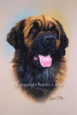 More details for leonberger head study print by robert j. may