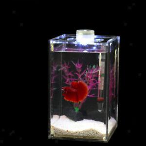 Mini LED Aquarium Fisch Tank für Kampffische, 10x10x16cm