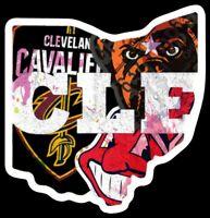 Vinyl Magnet Cleveland all in one Browns Indians Cavaliers custom Wahoo Brownie