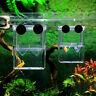Aquarium Fish Tank Guppy Double Breeding Breeder Rearing Hatchery R6A7 Box E5M1