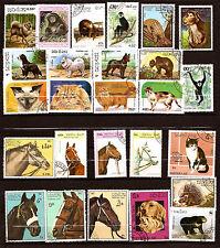 LAOS Animali selvatici e domestico : cavalli,chiens,gatti, scimmie F4