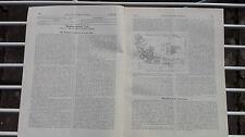 1903 27 Weltausstellung St Louis / Breslau Jüdischer Friedhof