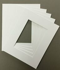 Pack of 5 11x14 White Picture Mats Bevel Cut for 8x12 Pictures
