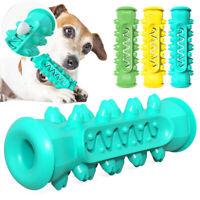 Hundespielzeug Unzerstörbar Intelligenz Zahnbürste Haustiere Hundespielzeug Grün
