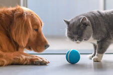 Wicked Ball - Your Pet's Joy when Home Alone