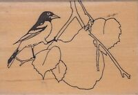 """oriole on branch genesis Wood Mounted Rubber Stamp 2 1/2 x 2""""  Free Shipping"""