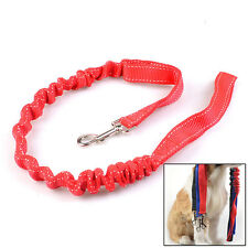 Dog Leash Pet Walking Traction Strap Harness Elastic Bungee Nylon Durable Rope
