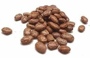 Pinto Beans - Take the Taste Test - SPICESontheWEB
