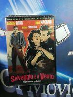 SELVAGGIO E' IL VENTO  DVD *A&R*DRAMMATICO