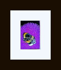 ACEO ORIGINAL-ANIMAL ART- pastels*FOXHILL STUDIO,    MILK THISTLE AND THE BEE
