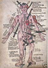 Victorien Anatomie Corps Imprimé Squelette science médecine La torture chirurgie Gothique