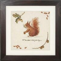 """Red Squirrel Sampler Counted Cross Stitch Kit - 14 Count - 9.75 x 9.75"""" - Anchor"""