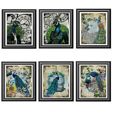 Peacock Collection Art Prints on Dictionary Book Pages Set of 6 Prints Pictures