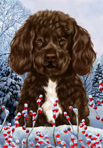 Winter House Flag - Brown and White Portuguese Water Dog 15488