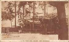 Noumea New Caledonia Town Hall Antique Postcard J50835