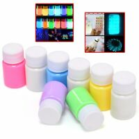 Glow in the Dark Acrylic Luminous Paint Bright Pigment DIY Art Decoration 20g