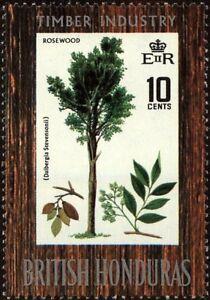 BRITISH HONDURAS - 1969 - Hardwood Trees - Rosewood - MNH Stamp - Sc. #231