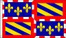 5' x 3' Burgundy Flag France Region Regional French Provincial Province Banner