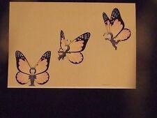 "Vtg 1978 Stewart Moskowitz Art Print Poster Butterflies 22""X15"" MintConditon NOS"