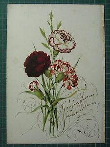 1848 PRINT ~ CARNATION - FASCINATION - FLOWERS AND THEIR KINDRED THOUGHTS