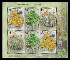 Stamps 2019 Belarus 1303-1305 Flora. Mushrooms Lichens (block)