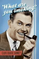 WHAT ARE YOU SMOKING? ~ CAN I HAVE SOME? ~ 24x36 MARIJUANA HUMOR POSTER