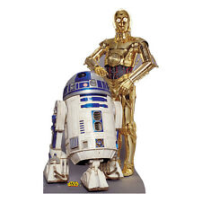 R2-D2 & C-3PO Star Wars Droids Lifesize CARDBOARD CUTOUT Standup Standee Poster