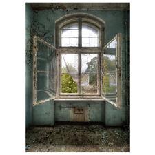 5x7FT Vinyl Backdrop Photography Prop Retro Indoor Window Photo Background SP