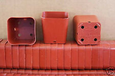 "2"" NEW square plastic pot, nursery seed starter reusable terracotta  25 pots lot"