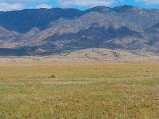 "SUPER NICE 5 ACRE NEW MEXICO RANCH ""TIERRA GRANDE VALLEY""! $150/MONTH! NO INT!"