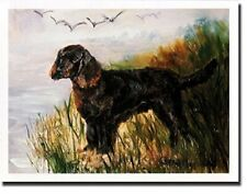 American Water Spaniel Profile Notecards 6 Note Cards 6 Envelopes Ruth Maystead