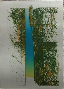 Karl Heinz Dennig litografia 1973 Spiga 36x26 firmata numerata 5/40 pubblicata