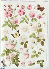 3D Stanzbogen Bogen Blumen Rosentraum Rosen rosa weiß Schmetterlinge