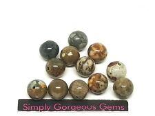12 Pretty Round Rocky Butte Picture Jasper Gemstone Beads - 8 mm