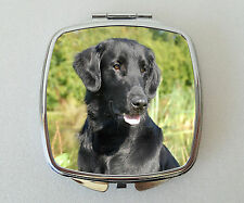 Flatcoated Retriever Compact Mirror Handbag Valentines Mothers Day Novelty Gift